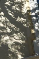 Partial Solar Eclipse Dappled Shadow