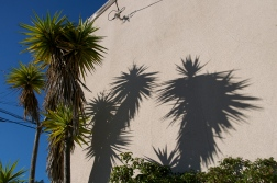 Spiky shadow